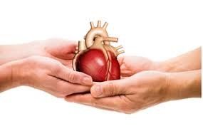 Cost of Heart Transplant Surgery in India