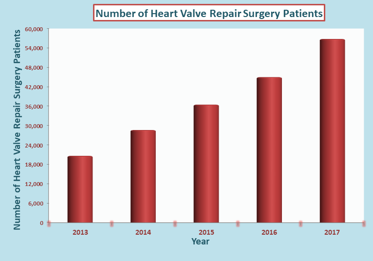 Heart Valve Repair Surgery Cost in India
