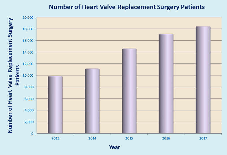 Heart Valve Replacement Surgery India